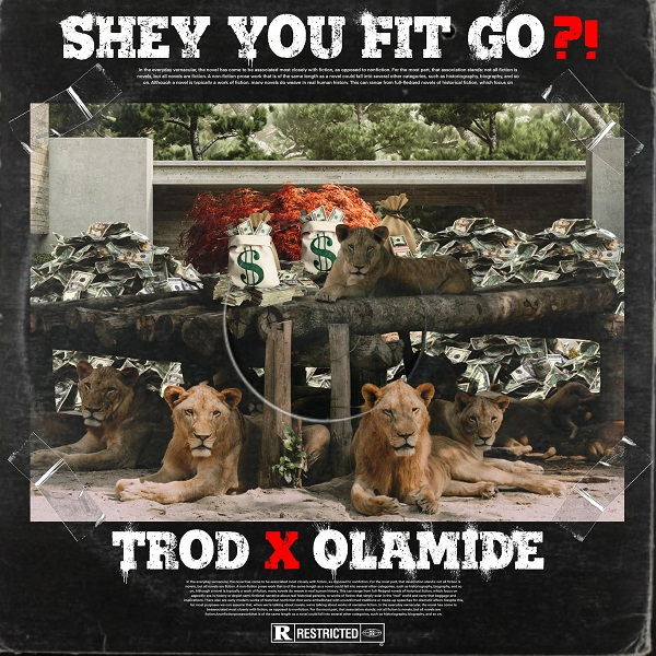 TROD - Shey You Fit Go?! Ft Olamide Free Mp3 Download