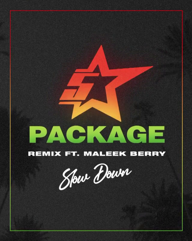 King Promise - Slow Down (Remix) Ft Maleek Berry Mp3 Download